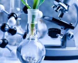 Cheminiai indai